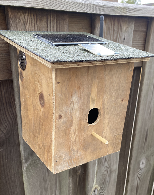 What the birdhouse will eventually look like